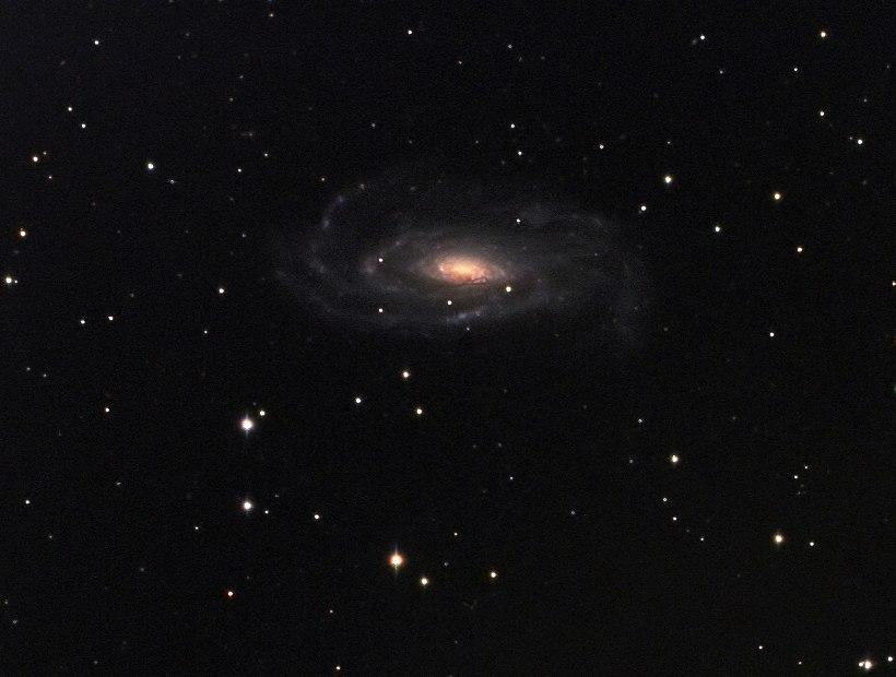 NGC 5033. Credit: Peter Bresseler.