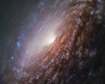 NGC 5033 - HST.png