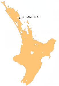 Karte von Bream Head