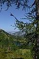 Nature in Austria 2012 (1).jpg