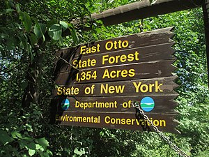 New York State Forests - Entrance sign for the East Otto State Forest in Cattaraugus County.