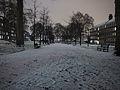 Night snow (8398009863).jpg