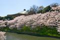 Nippon Budoukan AGE Ibamoto 6.png