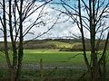 North Downs at Chevening 2.JPG
