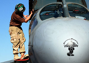"Northrop Grumman EA-6B Prowler - ""FrankenProwler"" during a pre-flight inspection at Al Asad Air Base, Iraq"
