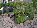 Ogród biblijny w Muszynie 11.jpg