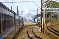 Oigawa Railway C11 SL 2009.jpg