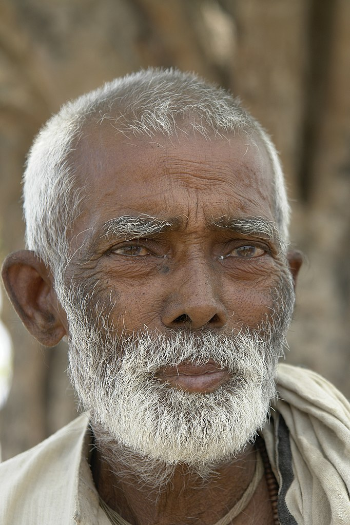 File:Old man, Bihar, India, 2012.jpg - Wikimedia Commons