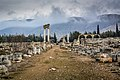 Old path and the ruins of Umayyad City in between.jpg
