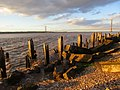 Old wharf and the Humber at high tide (geograph 5447291).jpg