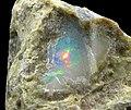 Opal-255191.jpg