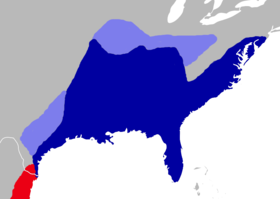 Oryzomys palustris distribution.png