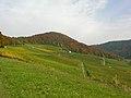 Osterfingen 13.10.2008 12-41-36.jpg
