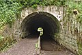 Otters Tunnel 1.jpg