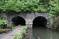 Otters Tunnel 4.jpg