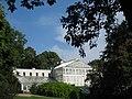 Palm house - Oslo Botanical Garden - IMG 8987.jpg