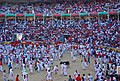 Pamplona-pl-toros-sf2008-carthesian-01.jpg