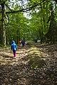 Park Kulturowy, Grobowiec z okresu neolitu, Wietrzychowice - panoramio.jpg