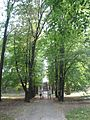 Park w Gumniskach, Tarnów - Gumniska (-) 14 pavw.JPG