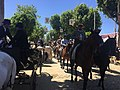 Paseo de caballos en Feria de Abril de Sevilla MG 0084.jpg