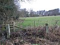 Pastures and woodland west of Shaws Lane - geograph.org.uk - 629563.jpg