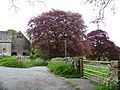 Path and trees, Notgrove-geograph-3021171-by-Michael-Dibb.jpg