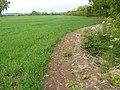 Path at Bunny - geograph.org.uk - 1335707.jpg