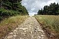 Path in Wales 2.jpg