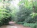 Path on Eltham Common - geograph.org.uk - 1297317.jpg