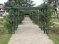 Pergola in Keszthely Balaton Shore Park, 2016 Hungary.jpg