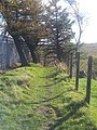 Perspective on the path between Buttries and Armadale Academy - panoramio.jpg