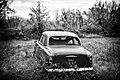 Peugeot 203 black and white picture.jpg