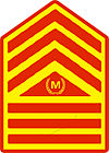 Philippine Marine Corps Master Sergeant Rank Insignia - designated as Command Sergeant Major.jpg