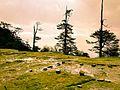 Phoktedara hill Base.jpg