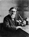 Photograph; portrait of E. Metchnikoff Wellcome M0004822.jpg