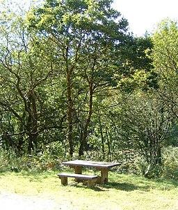 Picnic table in Cardinham Woods - geograph.org.uk - 560218