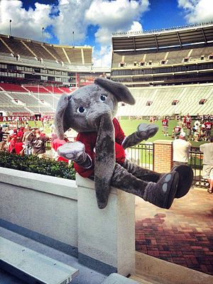 Big Al (mascot) - Big Al at Bryant Denny Stadium