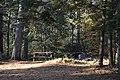 Piercefield, NY, USA - panoramio.jpg
