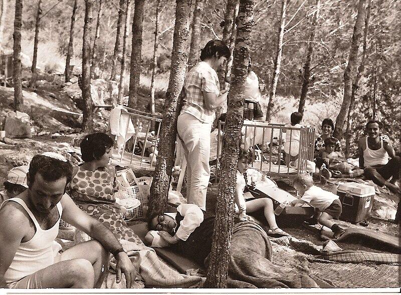 פיקניק ביער בארי
