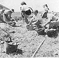 PikiWiki Israel 20677 The Palmach.jpg