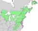 Pinus strobus range map 2.png