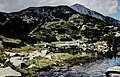 Pirin-2014-HvojnatiVrah03.jpg