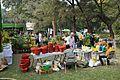 Plant Stall - Agri-Horticultural Society of India - Alipore - Kolkata 2013-01-05 2309.JPG