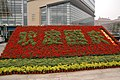 Plants and flowers abound in Beijing.JPG