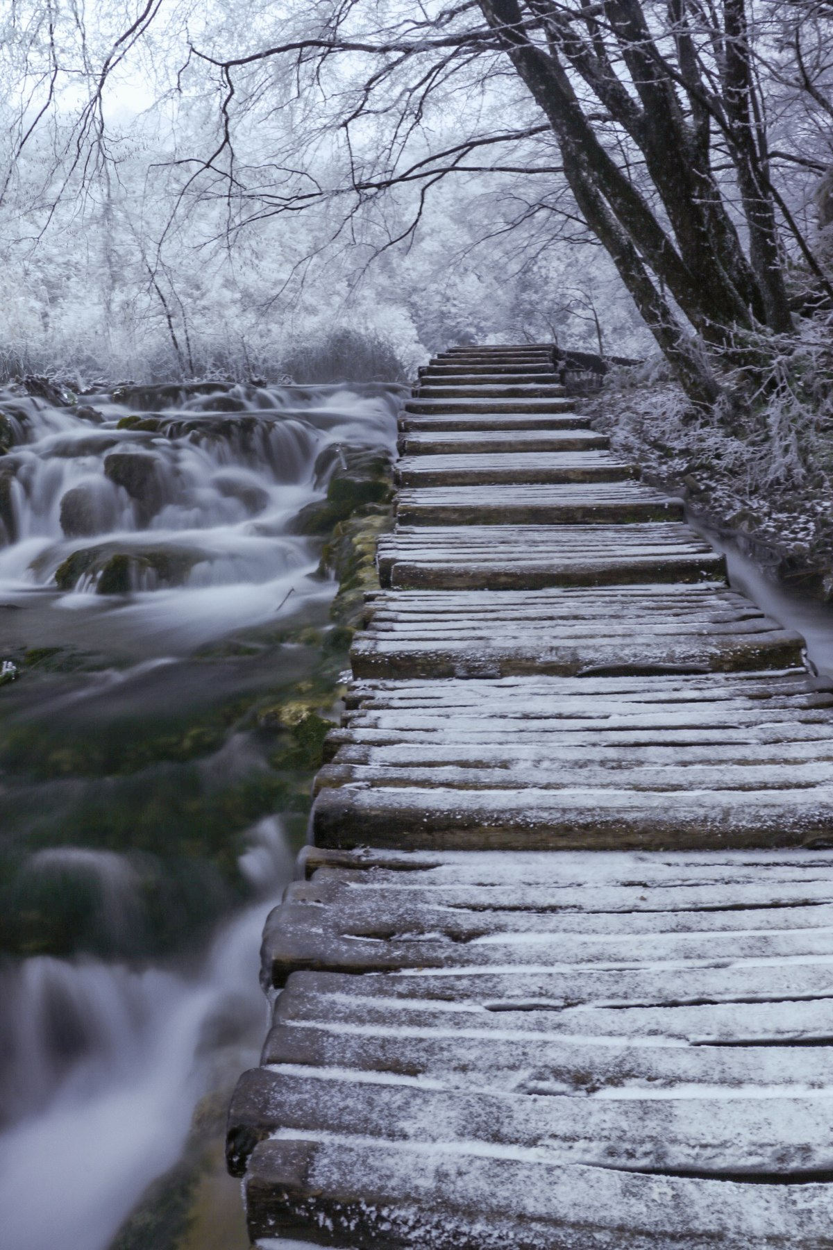 File Plitvice Lakes 4 Jpg Wikimedia Commons