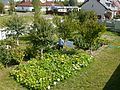 Polish People's Garden - Flickr - USDAgov.jpg