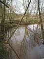 Pond near The Paddocks - geograph.org.uk - 730696.jpg