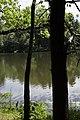 Porter Lake Trail, Forest Park, Springfield, Massachusetts - panoramio (5).jpg