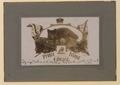 Prince Edward Island (HS85-10-28575) original.tif