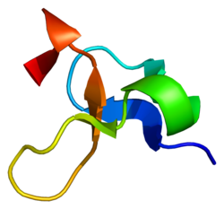Protein LASP1 PDB 1zfo.png